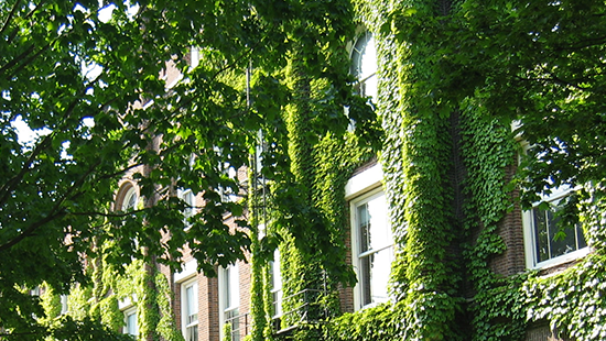 ivy-covered university building